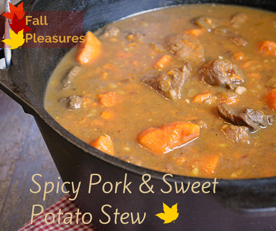 Sweet and spicy Pork Stew