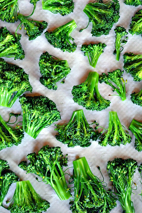 Preserving the Harvest Series: How to Freeze Broccoli