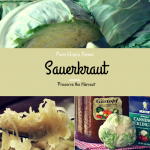Preserve the Harvest Series: How to Make Sauerkraut