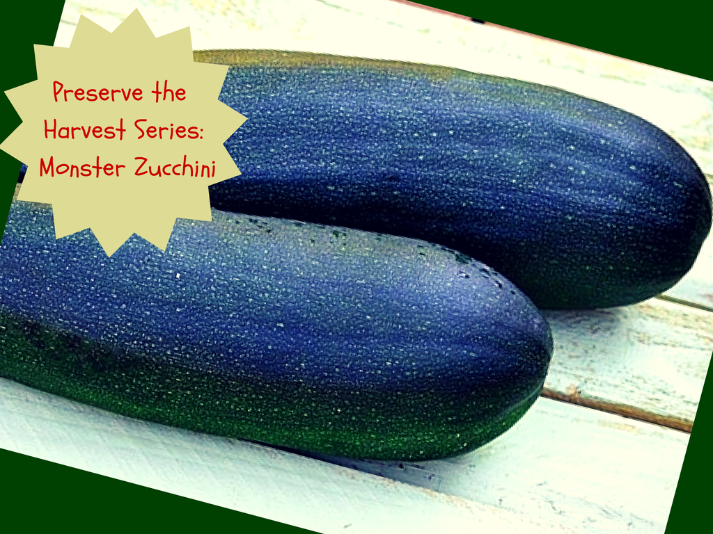 Preserve the Harvest: Monster Zucchini
