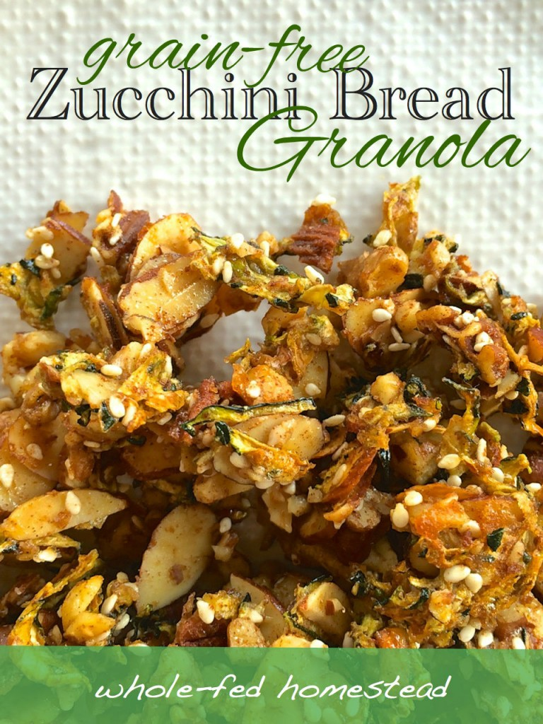 7 Outstanding  Zucchini Recipes to Love