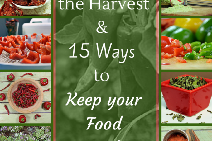 15 Ways to Keep Food Fresh #foodstorage #fresh #wholefood #realfood
