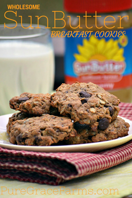 Wholesome SunButter Breakfast Cookies