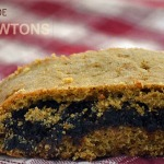 Double the Fun: Homemade Fig Newtons; 2 recipes Gluten Free and Whole Wheat