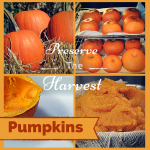 How to store and Preserve Pumpkins